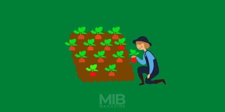 15 Best & Profitable Crops To Grow And Sell