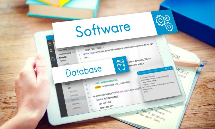How to Choose The Right Business Management Software