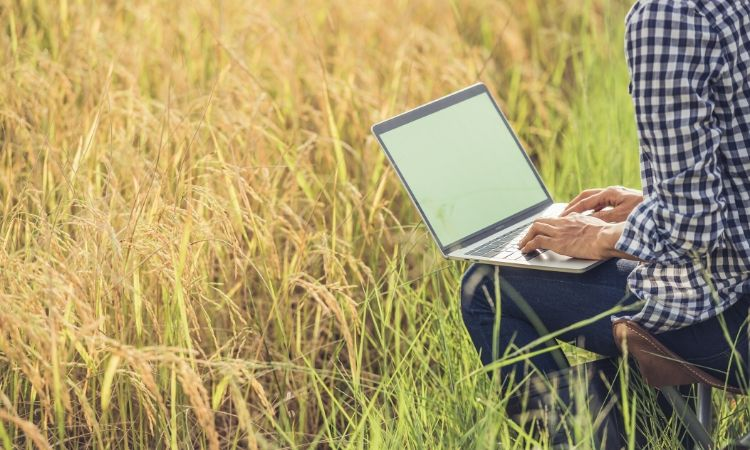 Types of Coverage You Need For Your Farming Business